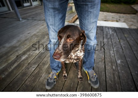 a man and his dog - stock photo