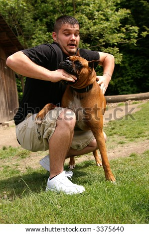 A man being attacked by a boxer dog, slight motion blur in face to show movement in the attack - stock photo