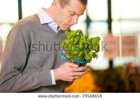 A man buying fresh basil in the grocery store - stock photo