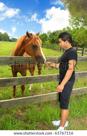 A man feeding a horse in a rural field in the countryside. - stock photo