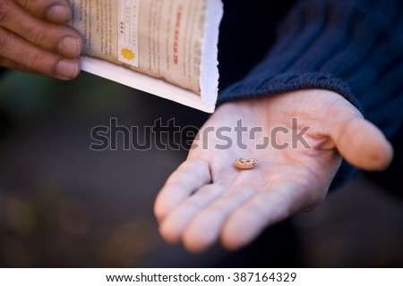A man holding a seed, close-up - stock photo