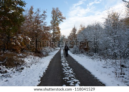 A man in a winter-autumn landscape