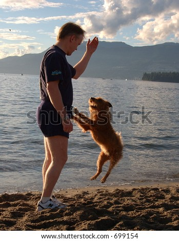 a man is playing with his dog - stock photo