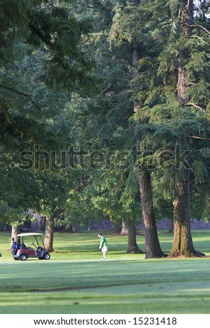 A man is standing on a golf course.  He is standing next to a golf cart and is in swing position.  Vertically framed shot. - stock photo