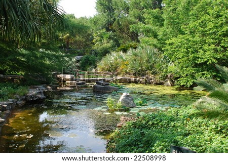 A man made pond at the Austin Zilker Taniguchi Gardens - stock photo