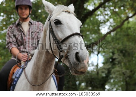 A man on a horse. - stock photo