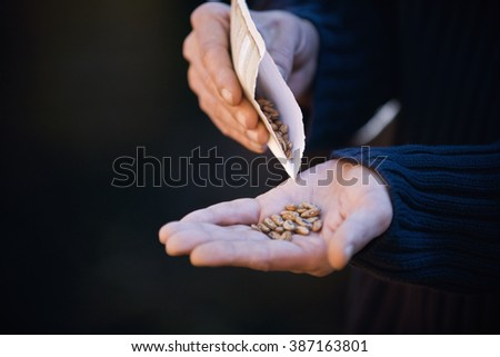 A man pouring seeds into his hand - stock photo