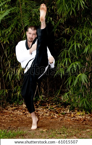 A man practicing his martial arts Karate moves