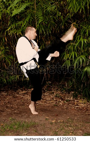 A man practicing his martial arts Karate moves - stock photo