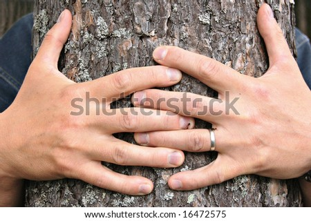A man's hands hugging a pine tree