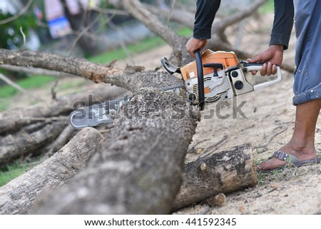 A man uses an electric chainsaw to cut a dead tree