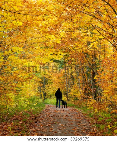 A man walking his dog down a trail surrounded by Fall colors. - stock photo