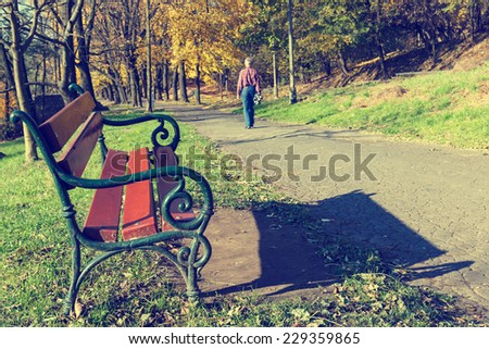 A man walking in the forest park  - stock photo