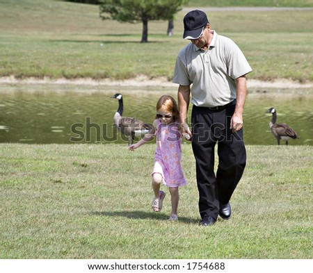 A man walking with his child or grandchild near a pond - geese in background. - stock photo