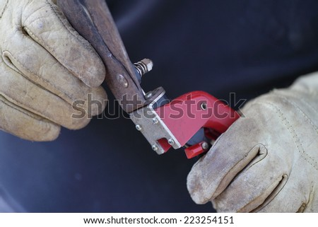 A man wearing work gloves holds a pair of grass cutting shears. - stock photo