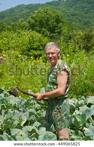 A man weeds garden-bed with hoe. Summer. - stock photo