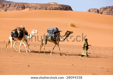 A man with two camels, Libya
