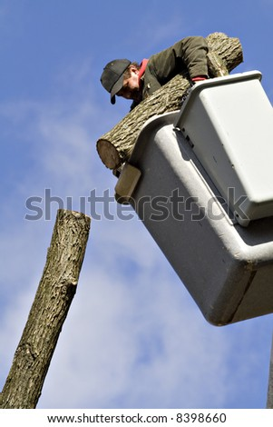A man works from a bucket lift - removing a tree piece by piece. - stock photo
