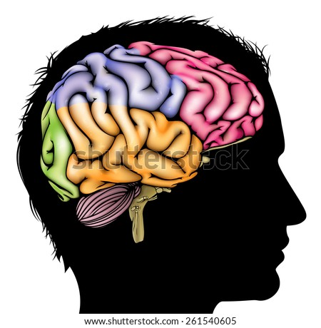 A mans head in silhouette with a sectioned brain. Concept for mental, psychological, brain development, learning and education or other medical theme - stock photo