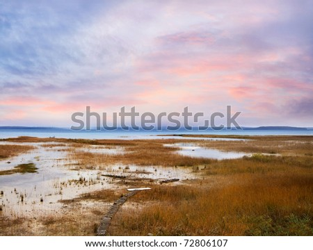 A Marsh Left Behind By The Receding Waters Of Lake Michigan, Traverse Bay, Michigan, USA - stock photo