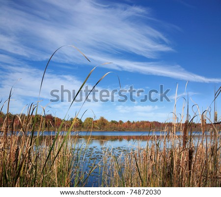 A Marshy Lake Under Brush Stroke Clouds, Lake Sixteen During Autumn, Oakland County Michigan. USA - stock photo