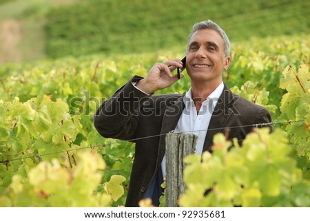 A mature man over the phone in a vineyard. - stock photo