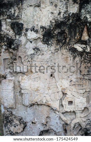 A Mayan carved stone relief in Tikal is slowly being eroded. The Tikal National Park, a UNESCO World Heritage Site, is one of the largest archeological sites of the pre-Columbian Maya civilization. - stock photo