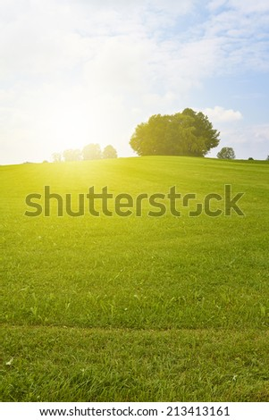 A meadow on a hill is illuminated by golden sunlight. - stock photo