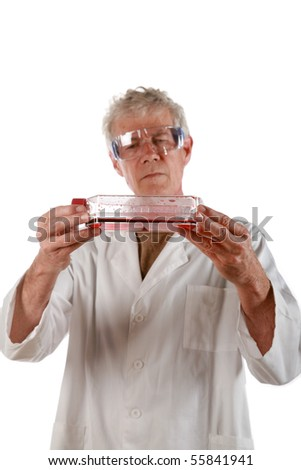 a medical research scientist examines a flask of red blood cells          isolated on white - stock photo