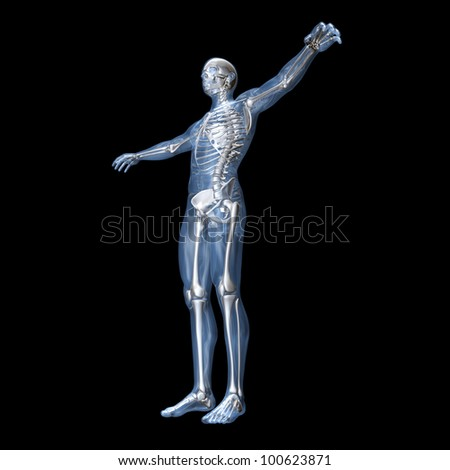 A medical visualization of human anatomy. 3D rendered Illustration. - stock photo
