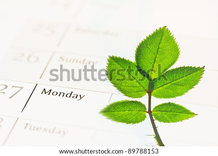 a metaphor of Corporate Social Responsibility,  tree growing on a calendar - stock photo