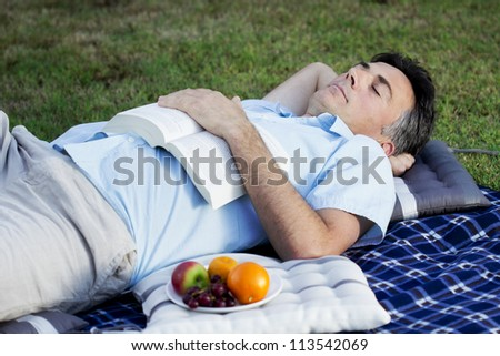 A middle aged man snoozing in the park - stock photo