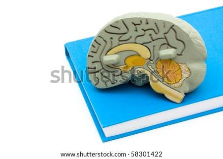 A model brain on a book isolated on a white background, Studying healthcare