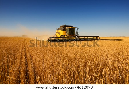 A modern combine harvester working a wheat field - stock photo