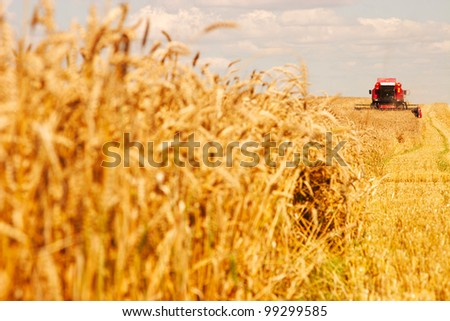 A modern combine harvester working a wheat field. - stock photo