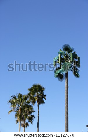 A modern communications tower made to look like a palm tree - stock photo