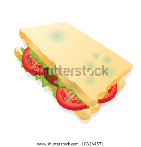 a moldy sandwich isolated on white background