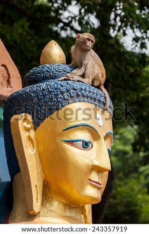 A monkey plays on top of the head of a huge buddha in Nepal. - stock photo
