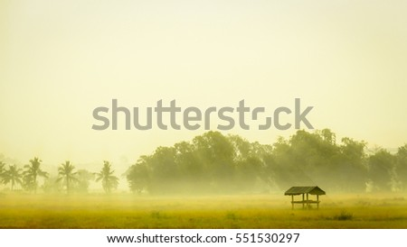 A morning landscape scene in a countryside featuring fog-covered farmland with an abandoned hut. Soft focus, pastel color