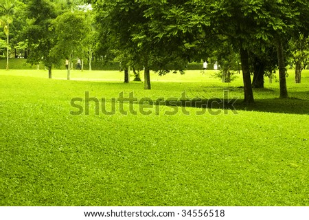 A morning view in garden park, with people exercising. - stock photo