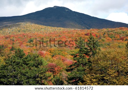 A mountain and the trees under at fall time - stock photo