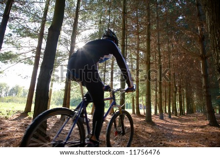 A mountain biker riding through a trail, Blur effect - stock photo
