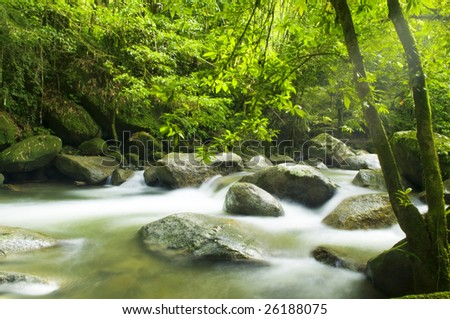 A mountain river with stream falling into it in the morning - stock photo