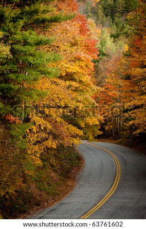 A mountain road winds through the colorful fall trees. - stock photo