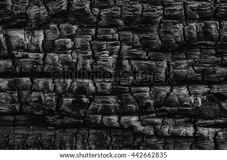 A natural abstract pattern of a wood  log burned in a fire creates a black and white textured background.