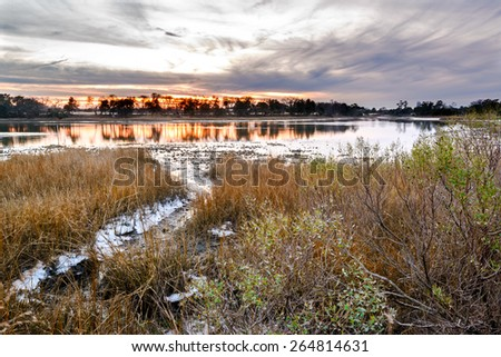 A natural oyster bed as seen at sunset on the Lynhaven Inlet off the Chesapeake Bay . Located in Virginia Beach, Va. - stock photo