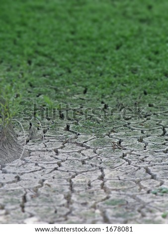 a natural phenomenon, dry soil, cracked under the influence of water and sun, blurred - stock photo