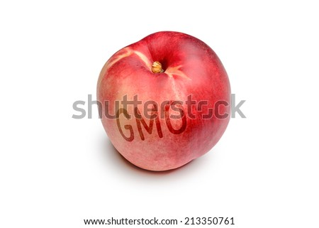 A nectarine contaminated by the use of GMO technology - stock photo