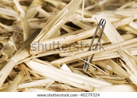 A needle in a bale of hay finally discovered. - stock photo
