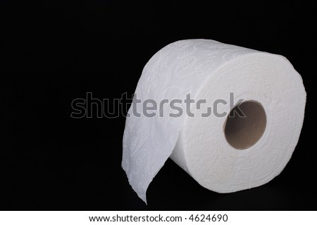 A new roll of white 2 ply toilet paper. - stock photo